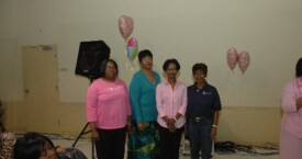 ABC Breast Health Summit 2011 (4)